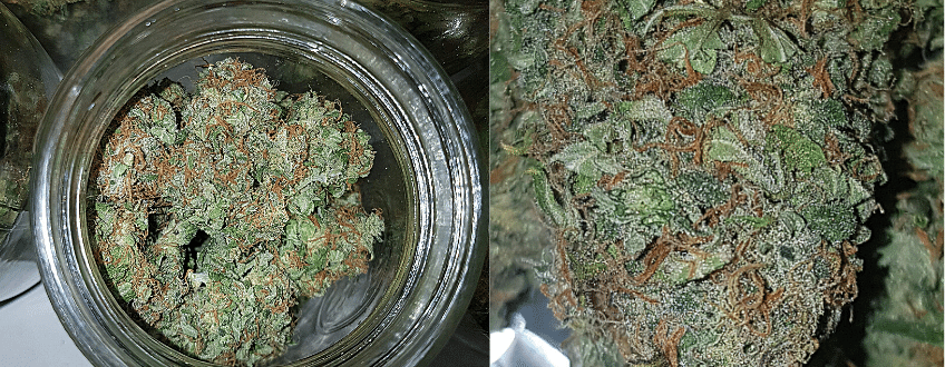 bruce banner automatic
