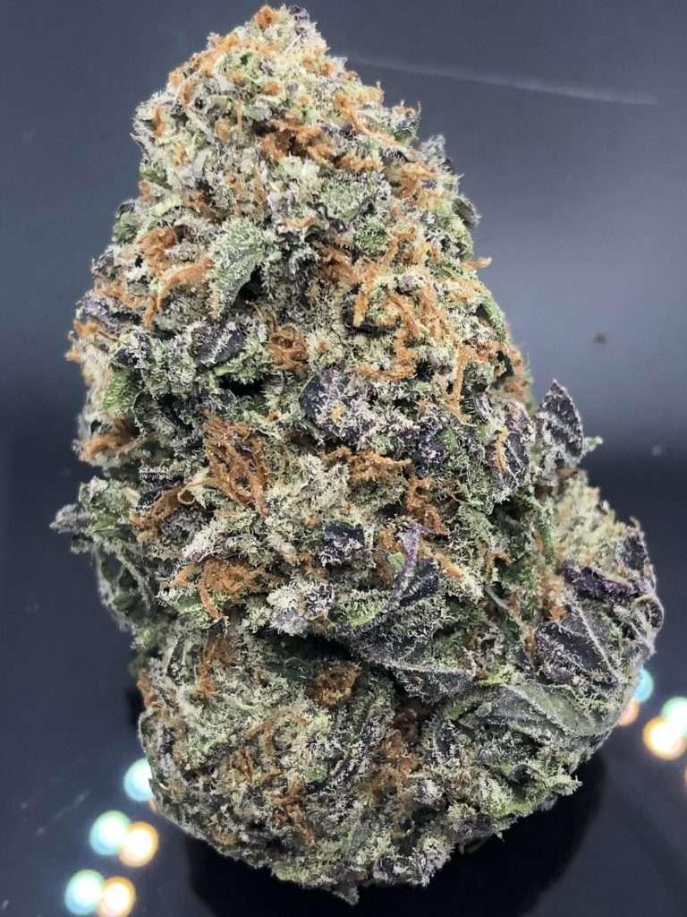 alaskan purple strain
