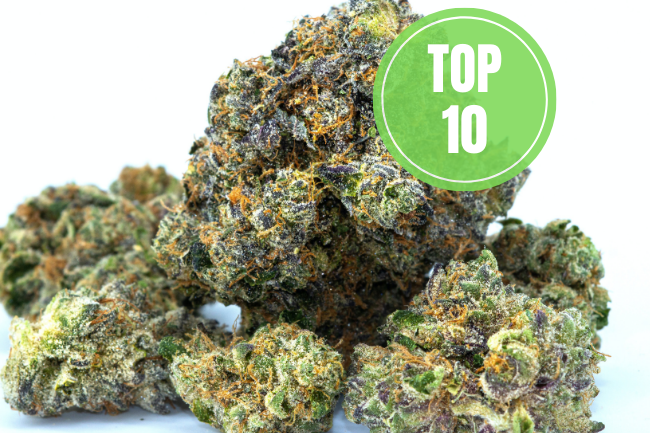 highest thc strains strongest weed