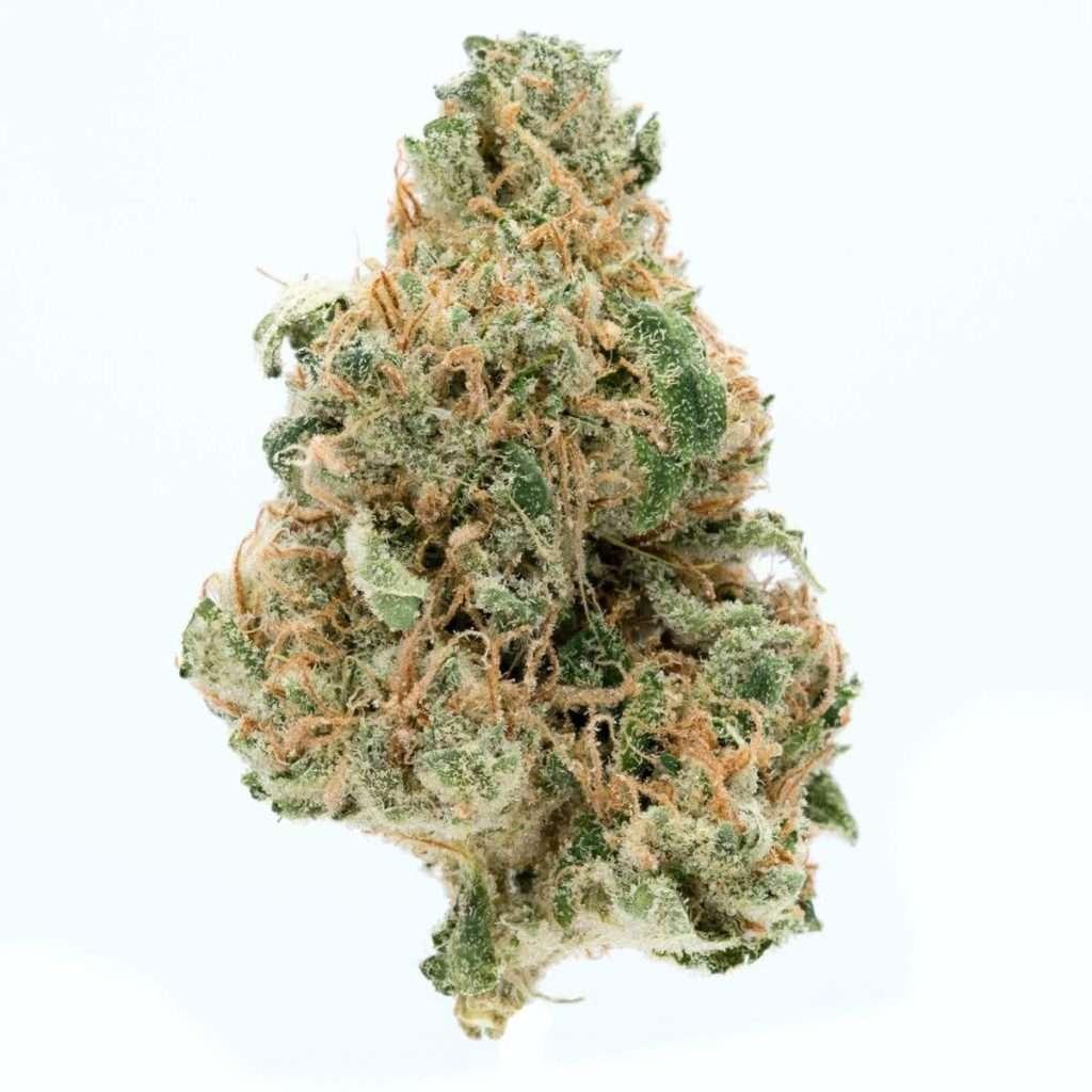 black diesel strain 1