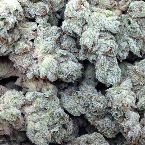 northern soul strain review